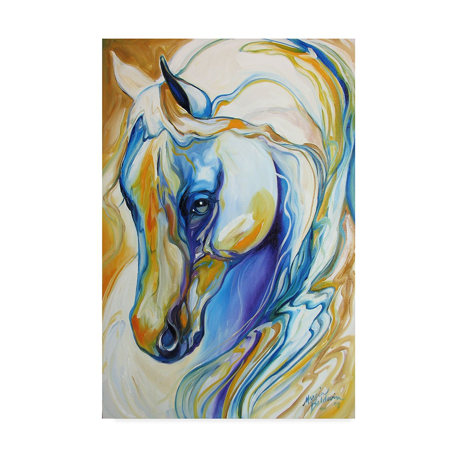 Fine Art Arabian Abstract  Animal Horse Canvas print wall art drop shipping