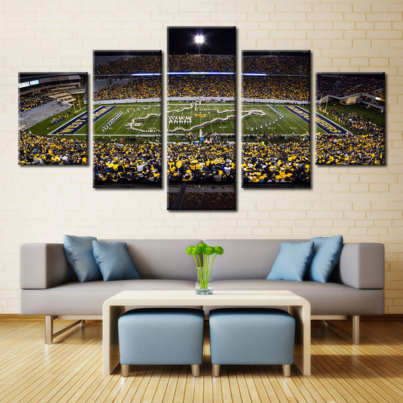 West Virginia Stadium Canvas baseball wall art print drop shipping